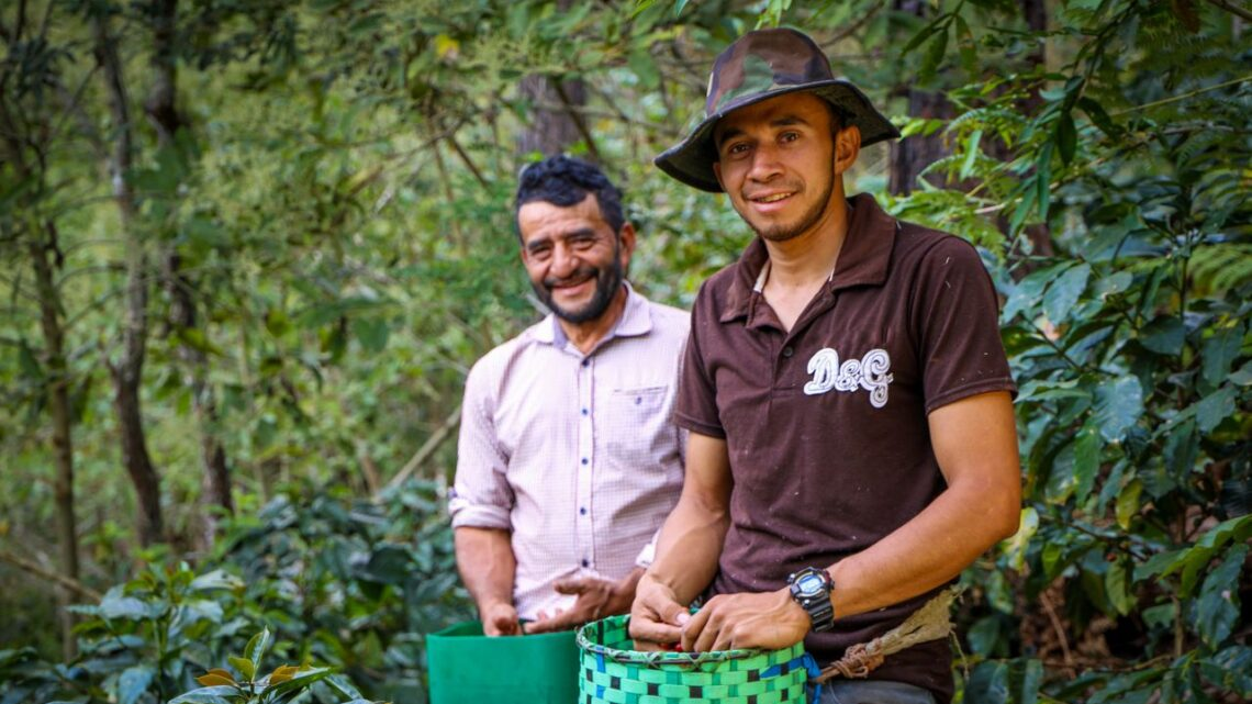 Young Entrepreneurs in Central America: Building a Life at Home Instead of Emigrating