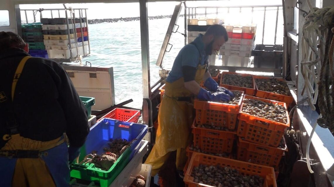 Jersey: French fishermen caught up in post-Brexit bureaucratic storm
